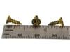 "100pc. #4 x 3/8"" Brass-plated Phillips Flat-Head Screws"
