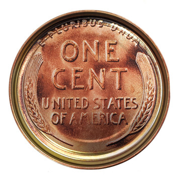 Wheat Penny Coin Illustrated 5-inch Paint Can Lid - Cigar Box Guitar Resonator