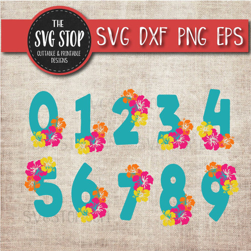 hibiscus numbers birthday design clipart cut file svg sublimation design