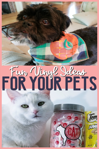 Love your pet with Vinyl