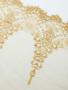 golden sparkly bra laces