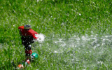 Watering your lawn in summer