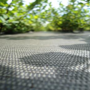 Ecomatt Plus Biodegradable Weed Fabric Roll