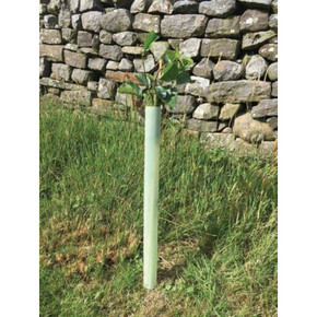 60cm Tubex Easywrap Hedge Guard