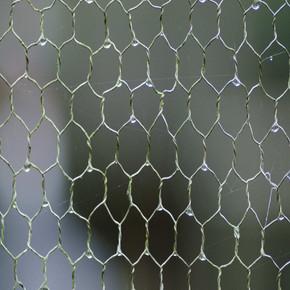 Rabbit Netting
