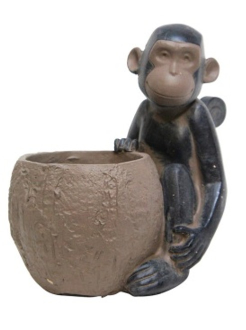 Monkey with Pot Plant holder - 21cm high