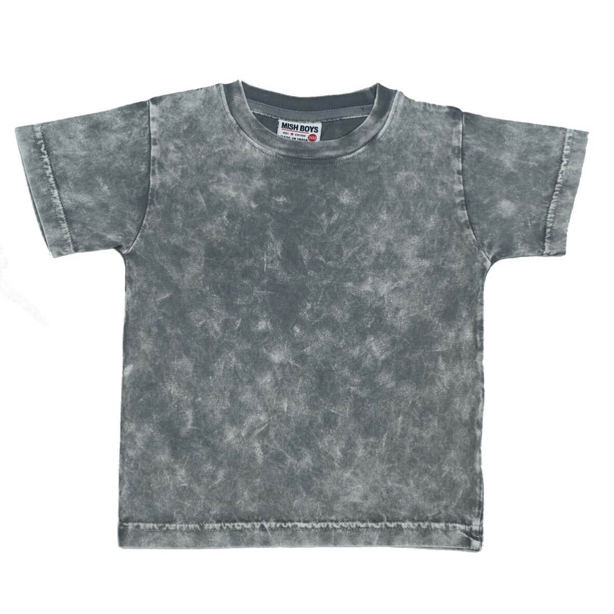 Boys Graphic Tee - Grey Enzyme