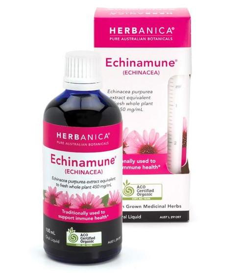 Herbanica Echinamune Oral Liquid 100ml The Pharmaceutical Plant Company SuperPharmacyPlus