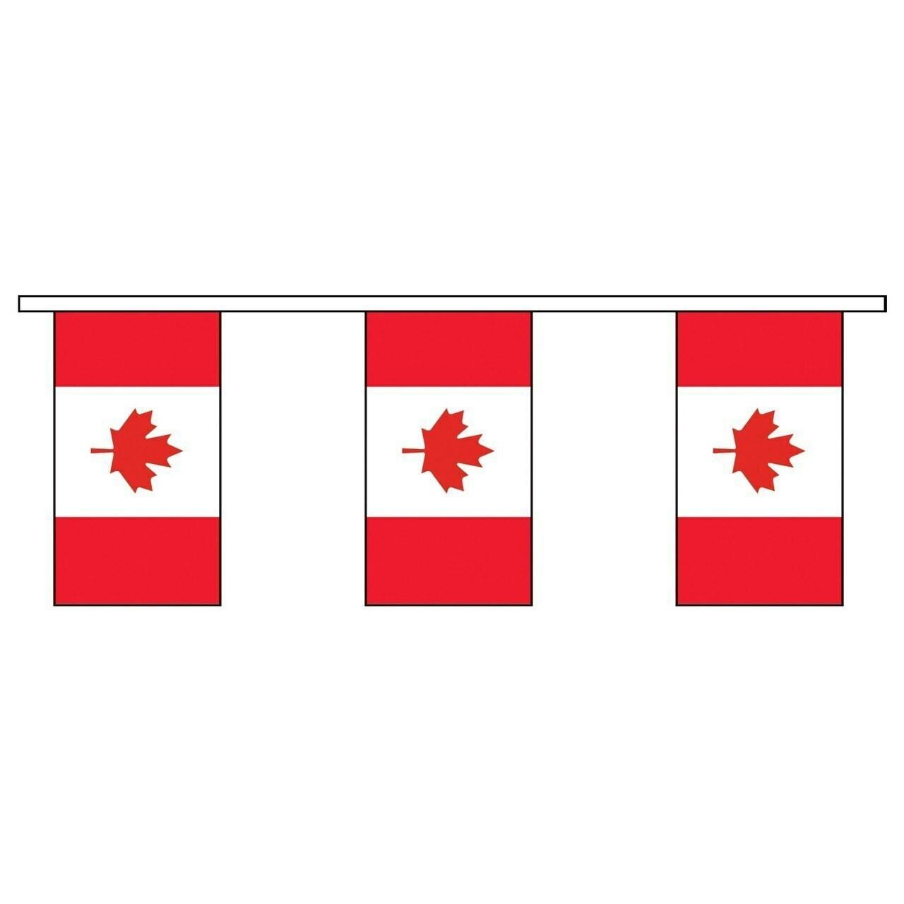 Canada Vinyl Pennants