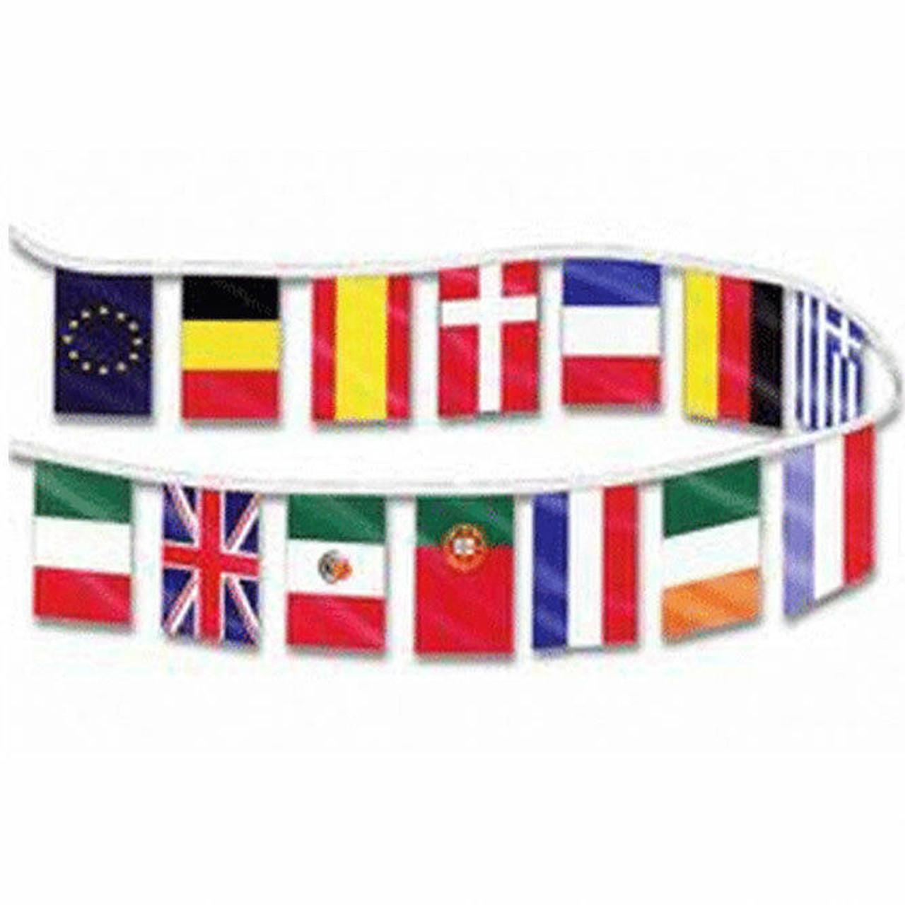 Assorted International Vinyl Pennants