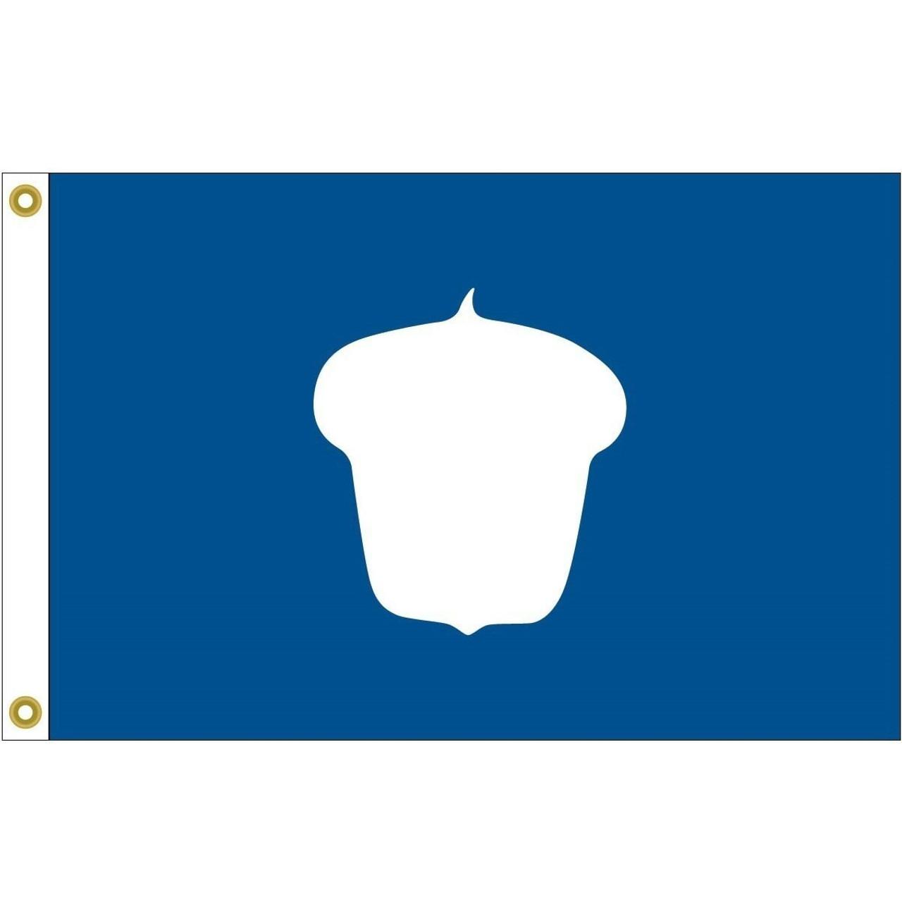 Treasurer Flag