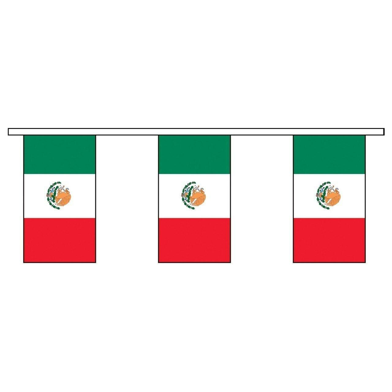 Mexico Vinyl Pennants