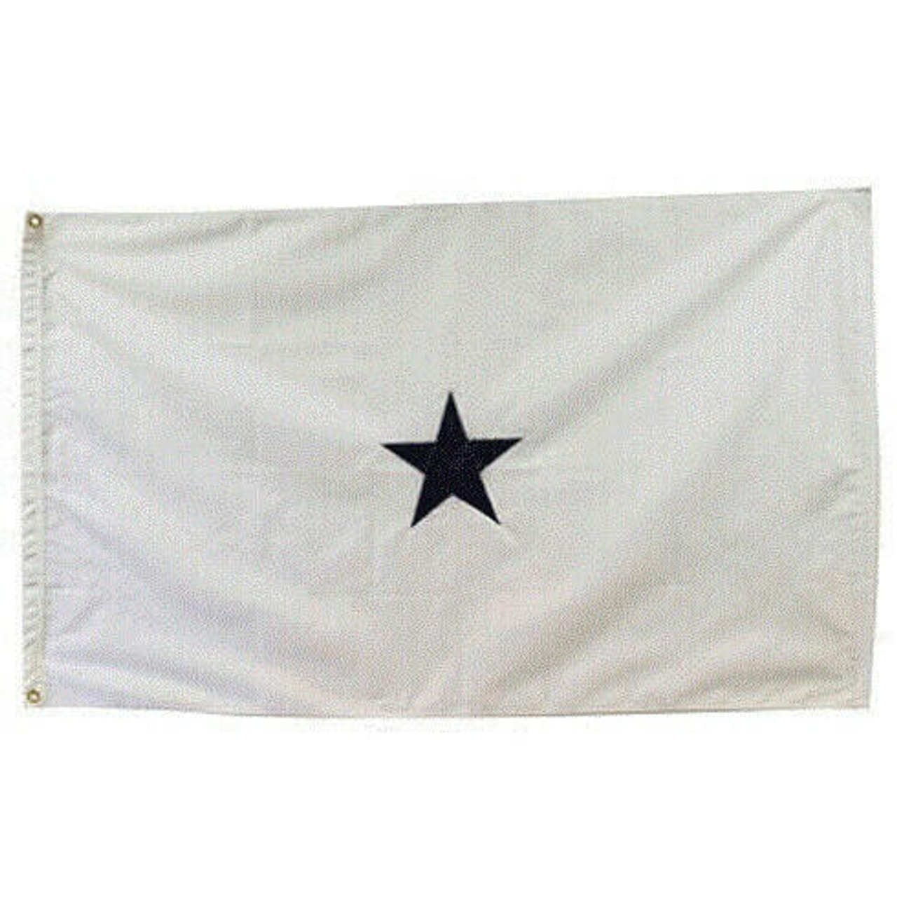Navy Non-Seagoing 1 Star Officer Flag. White flag with blue 5 point star at center