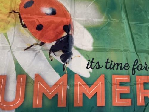 Ladybug Flag