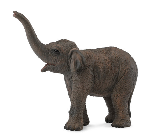 COLLECTA ASIAN ELEPHANT CALF (S)