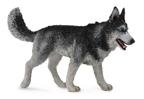 Collecta Siberian Husky