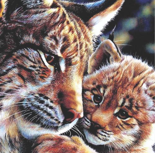 Diamond art - tiger and cub 30cm x 30cm