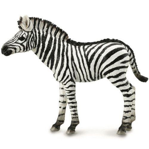 Collecta - Zebra Foal