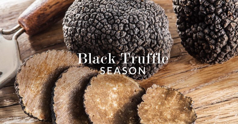 Black Truffle Season