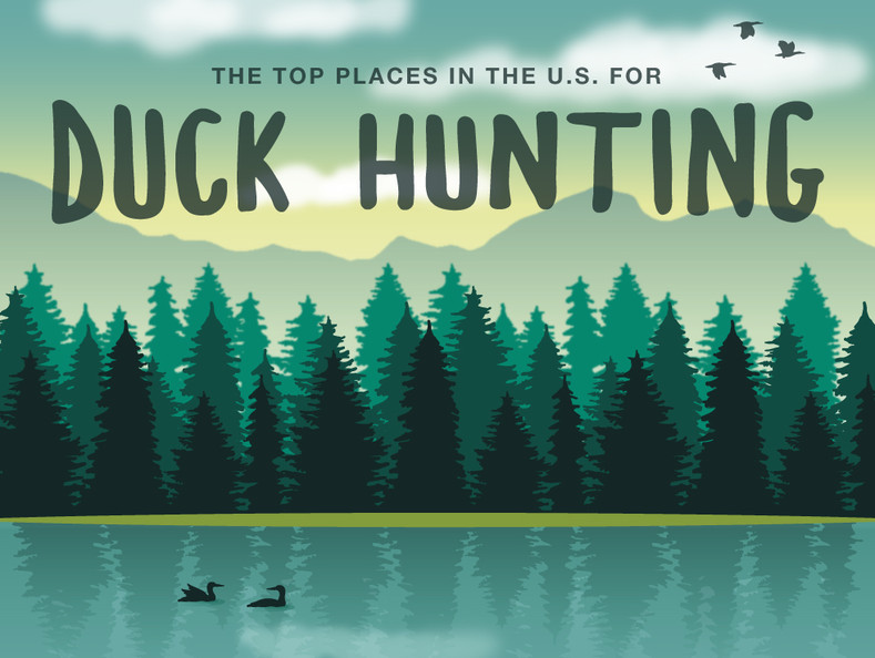 The Top Places in the US for Duck Hunting