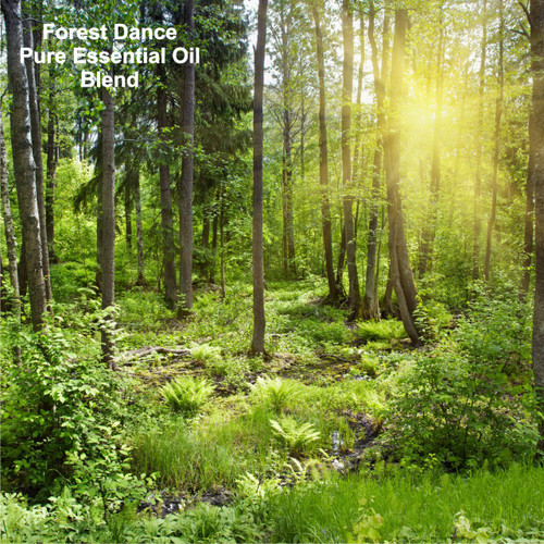 Forest Dance Blend Pure Essential Oil