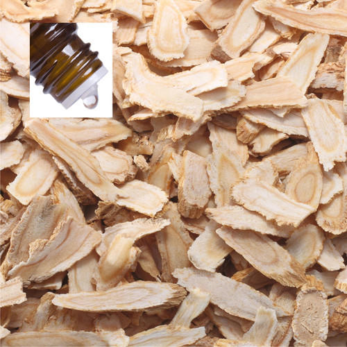 Angelica Root England Pure Essential Oil