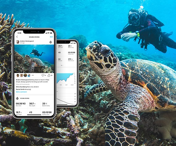 turtle with phones screens underwater