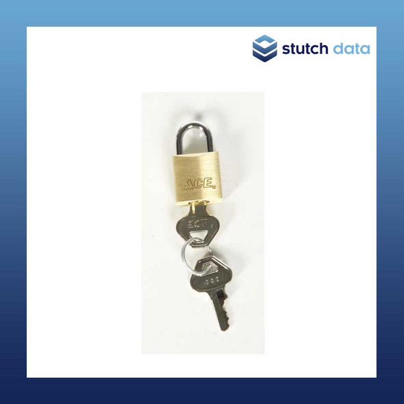 Image of Turtle Small Brass Padlock 6410 11-675956
