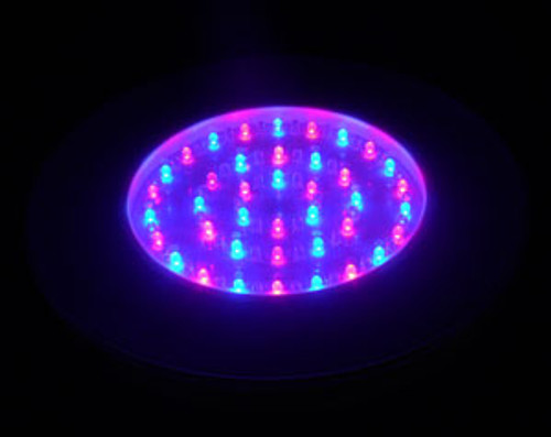 Multi Color LED Light Base for Centerpieces, Battery Operated,10 inch diameter