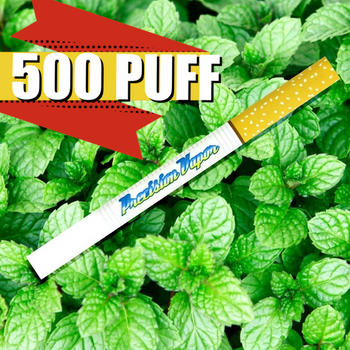 Disposable E-cig 500 Puff Menthol Flavor