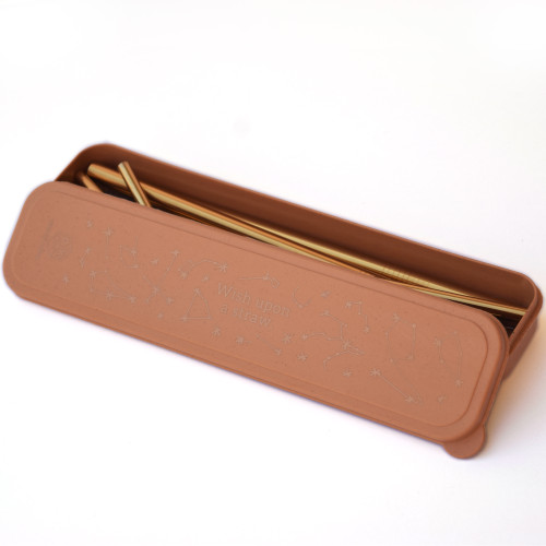 """Stainless Steel Gold Straw Set- """"Wish upon a Straw"""" Terracotta"""