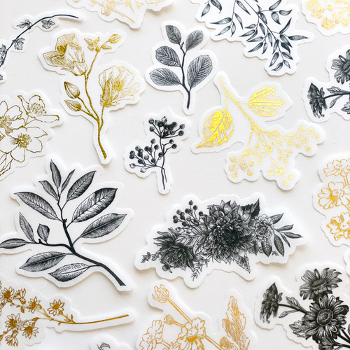 Sticker Pack: Black and Gold Botanical