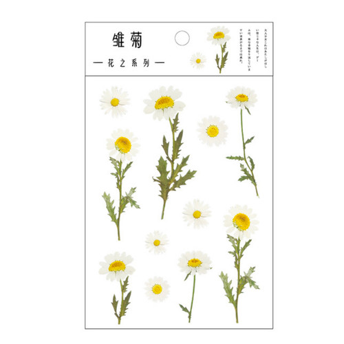 Pressed Flower Stickers | Daisies