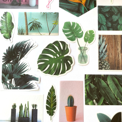 Tropical Botanical Stickers | Set of 20