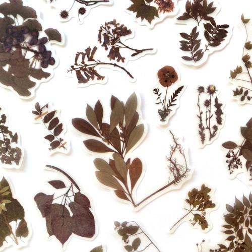 Woodland Botanical Stickers   Set of 20