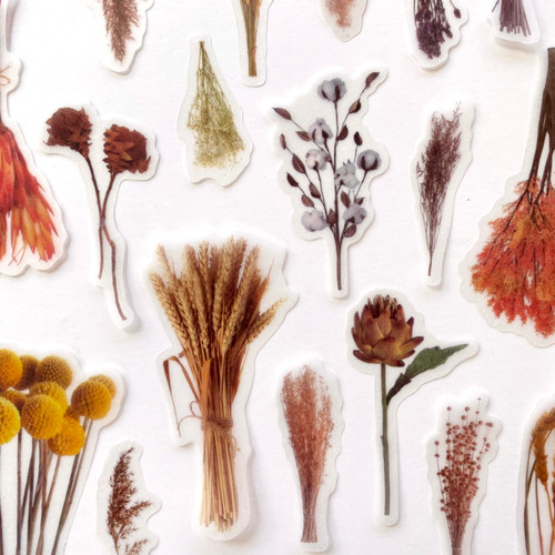 Grasslands Botanical Stickers   Set of 20 stickers