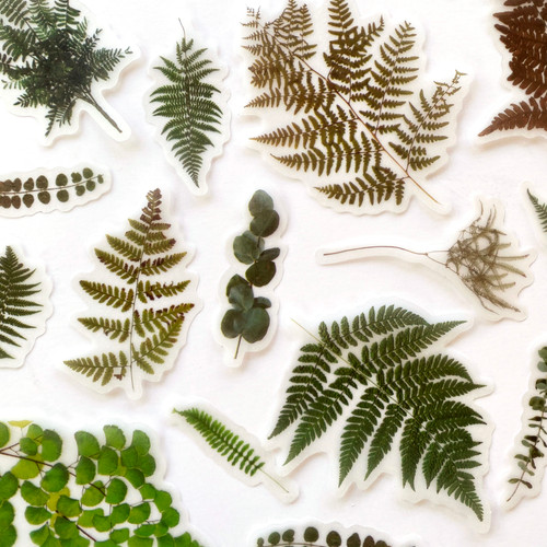 Fern Forest Botanical Stickers | Set of 20 stickers