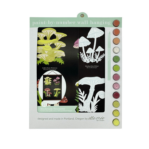 Mushroom Taxonomy Paint-by-Number Wall Hanging Kit
