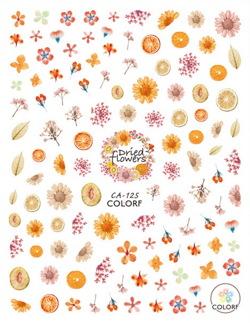 Dried Citrus & Flowers Nail Art Stickers ColorF CA-125