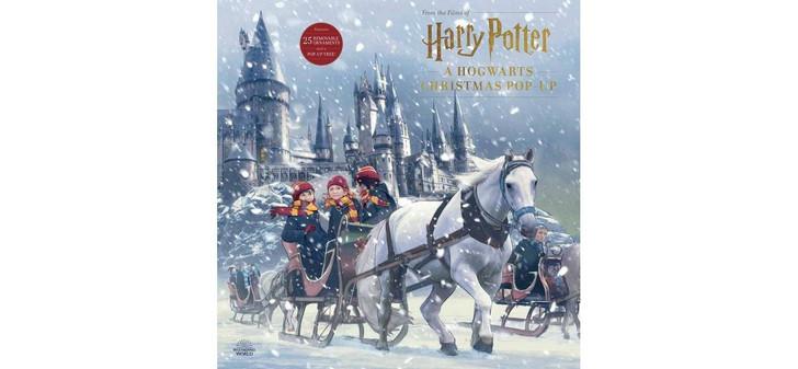 Harry Potter: A Hogwarts' Christmas Advent Calendar
