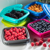 Bitty Berry Box with raspberries and blueberries