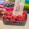 Bitty Berry Box - berry colander