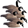 Higdon Magnum Canada Shell 6 Pack