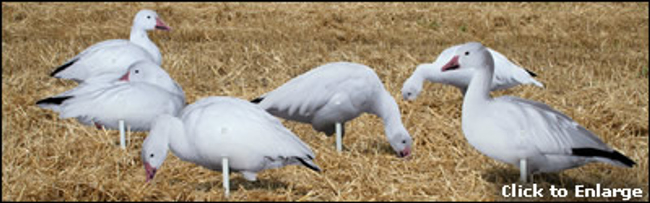 Real-Geese Pro Series II Snow Goose Silhouette
