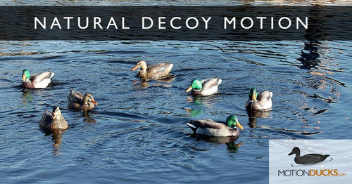 Ultimate 8 Decoy Spreader System & Jerk Rig