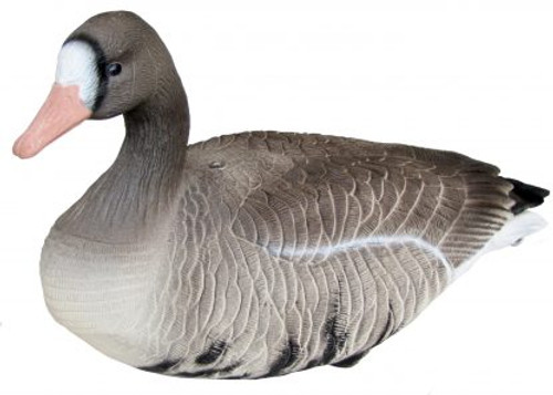 Mayhem Decoys Specklebelly Goose Full Body 12 Pack w/Stakes