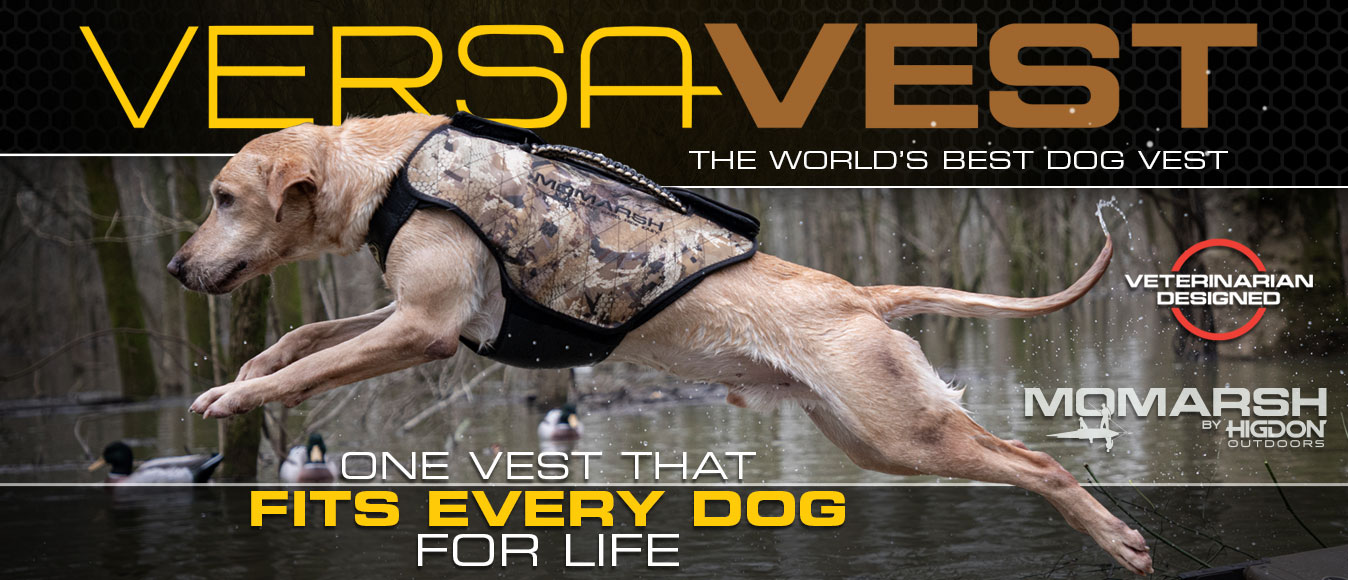 Engineered by Veterinarians, Hunters and Sport-Dog professionals to FIT EVERY DOG... FOR LIFE.