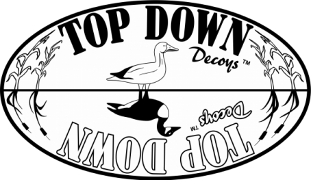Top Down Decoys