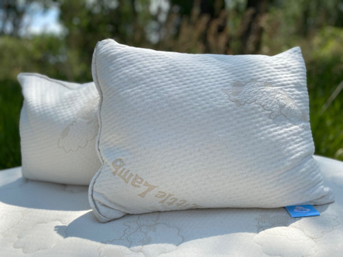 """Little Lamb Kids' Pillow 16"""" X 20"""""""