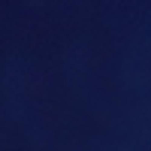 Seche Premier Colour Lacquer | Daring 65580 | 0.5 fl oz.